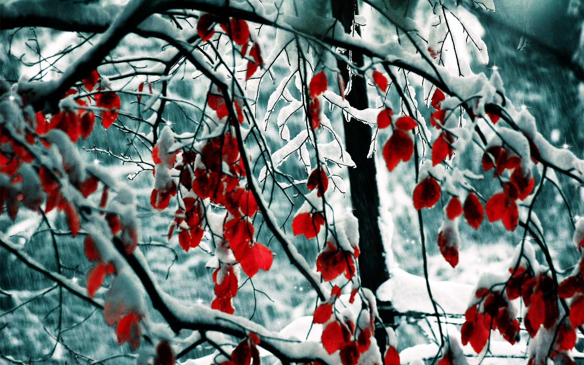 Snow_leaves-wide